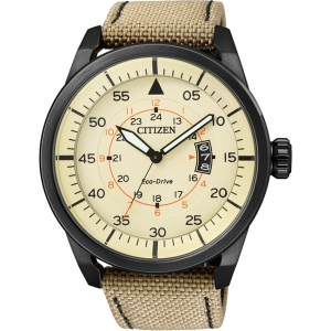 Citizen Eco-Drive Aviator AW1365-19P Horlogeband 22mm